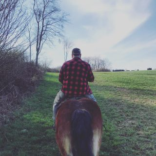Heute war mal wieder ein guter Tag! Sehr sehr frische Luft. Getier und Ruhe... herrlich! Und bei euch so? • • • #brachtkerl #ausritt #ausrittinsgrüne #ausflug #trip #ride #ridersofinstagram #yeehaw #pferde #reiter #reiterleben #horsesofinstagram #horse #horseriding #beautifulday #allalong